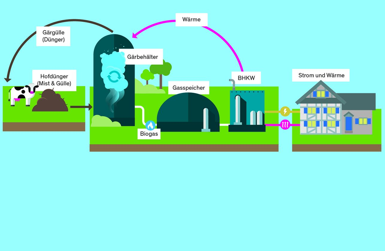 Coop Support Programme: Manure and slurry make energy and