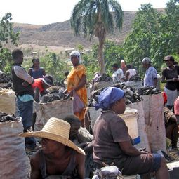 Crowd Funding carbon offset project Haiti